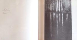 """""""Lo specchio del mago"""" 2008"""