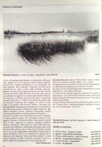 l'erba del lago -acquaforte